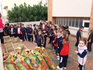 """Los alumnos de infantil estrenan nuevo proyecto: """"El huerto"""""""
