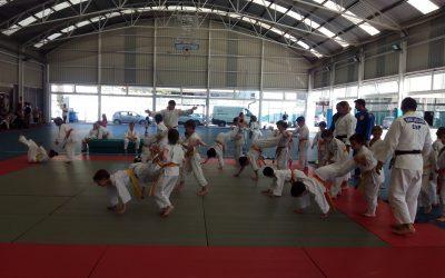 Exhibición Final de Curso de Judo