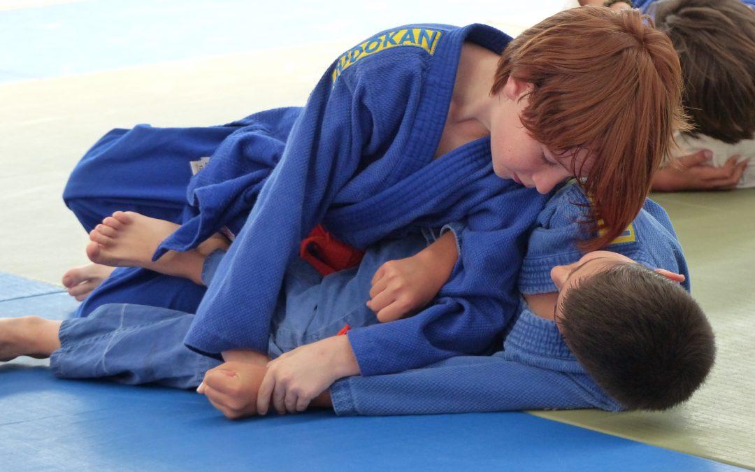 Final Liga Alevín de Judo